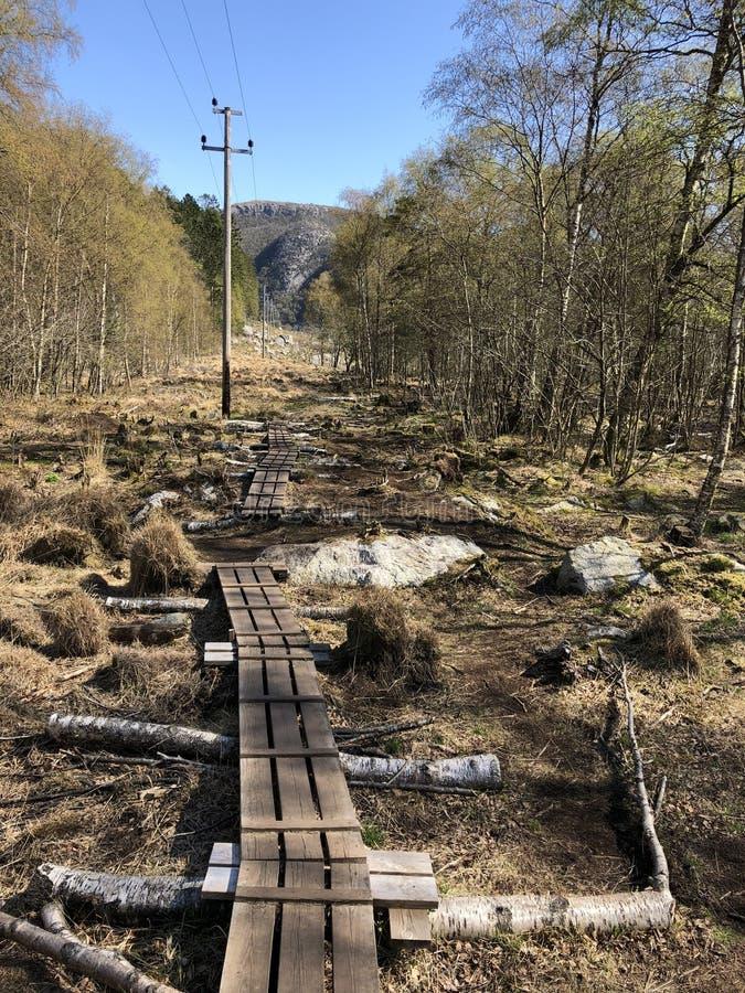 Νορβηγικό τοπίο, πεζοπορία Σάντι στοκ εικόνες