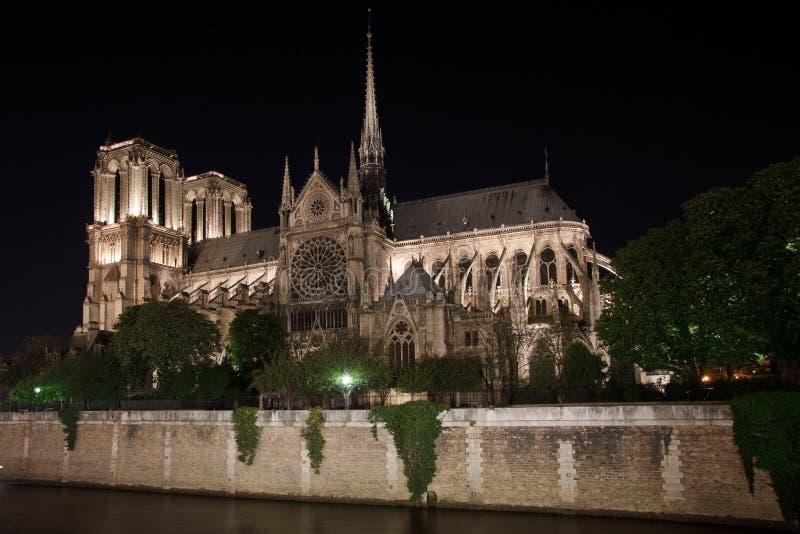 Νοτρ Νταμ de Παρίσι και το απλάδι στοκ εικόνες