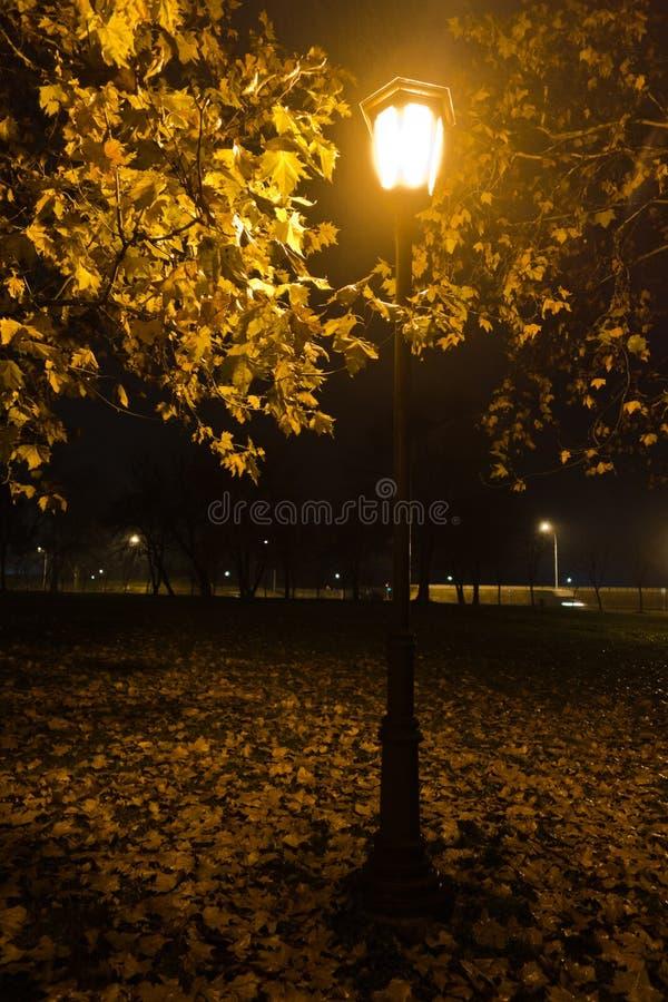 Ντεμοντέ φανάρι στο βράδυ φθινοπώρου στο πάρκο Kalemegdan, Βελιγράδι στοκ εικόνες