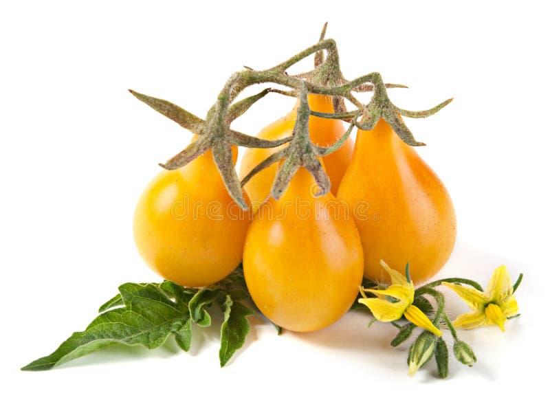 ντομάτα κερασιών κίτρινη στοκ εικόνα με δικαίωμα ελεύθερης χρήσης