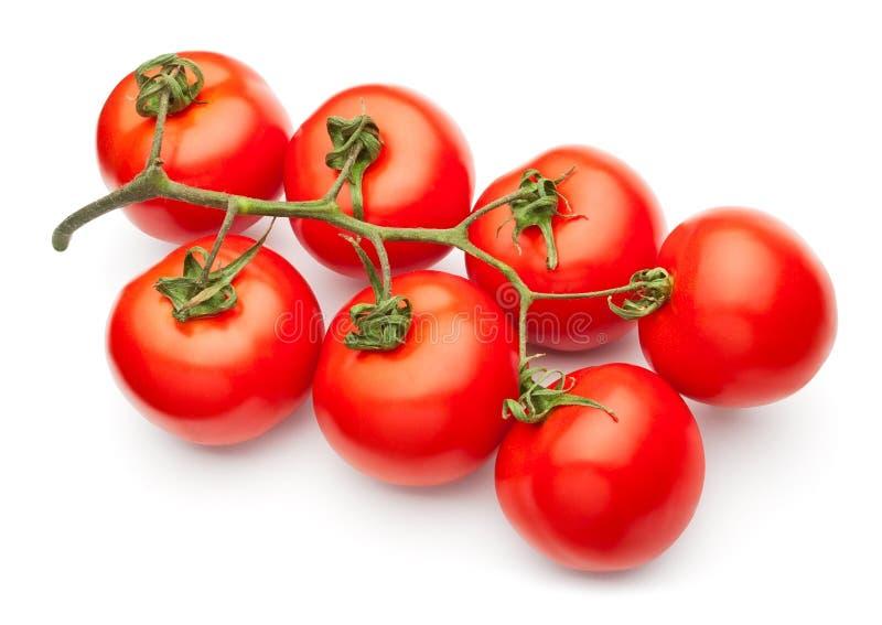 ντομάτα τομέων στοκ εικόνα