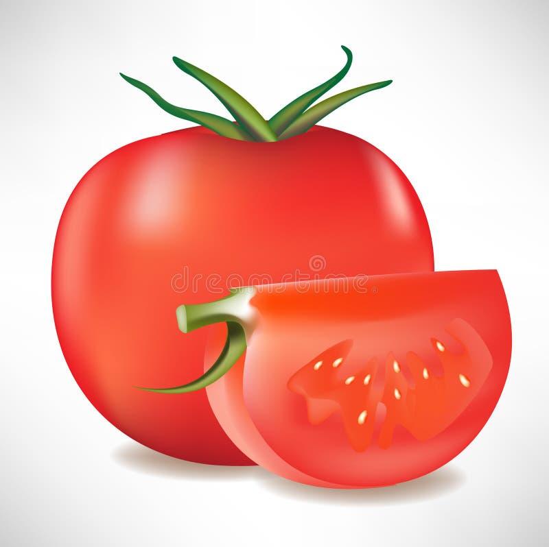 ντομάτα φετών διανυσματική απεικόνιση