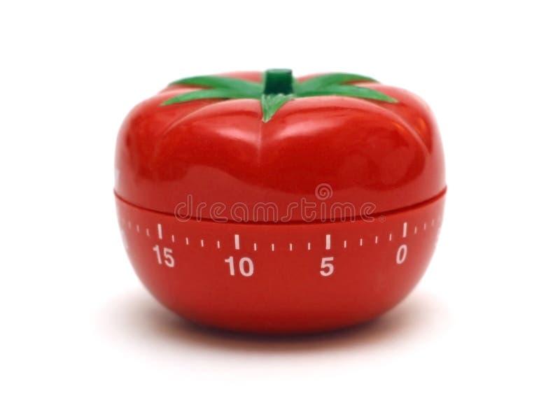 ντομάτα χρονομέτρων στοκ φωτογραφίες με δικαίωμα ελεύθερης χρήσης
