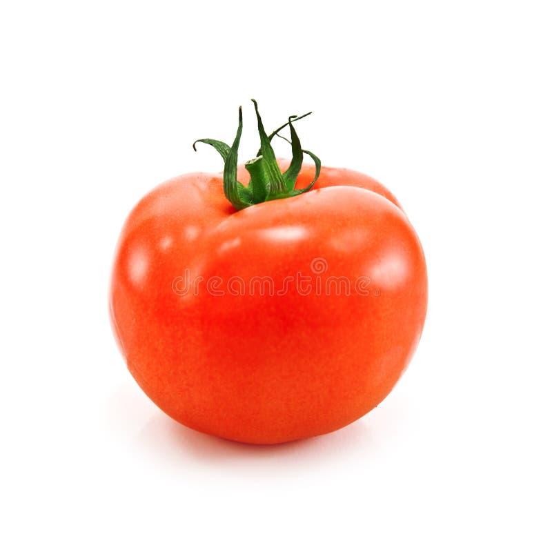 Download ντομάτα στοκ εικόνα. εικόνα από γεύμα, όρεξης, τρόφιμα - 13187229