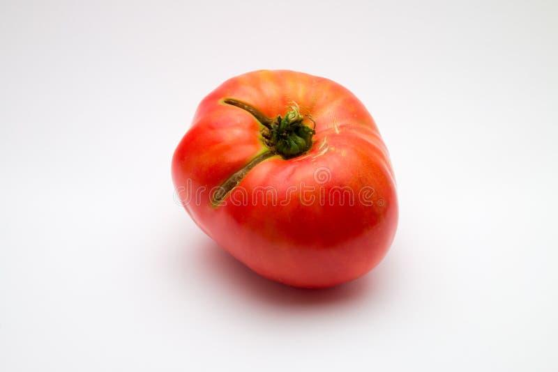 Ντομάτα Brandywine στοκ εικόνες με δικαίωμα ελεύθερης χρήσης