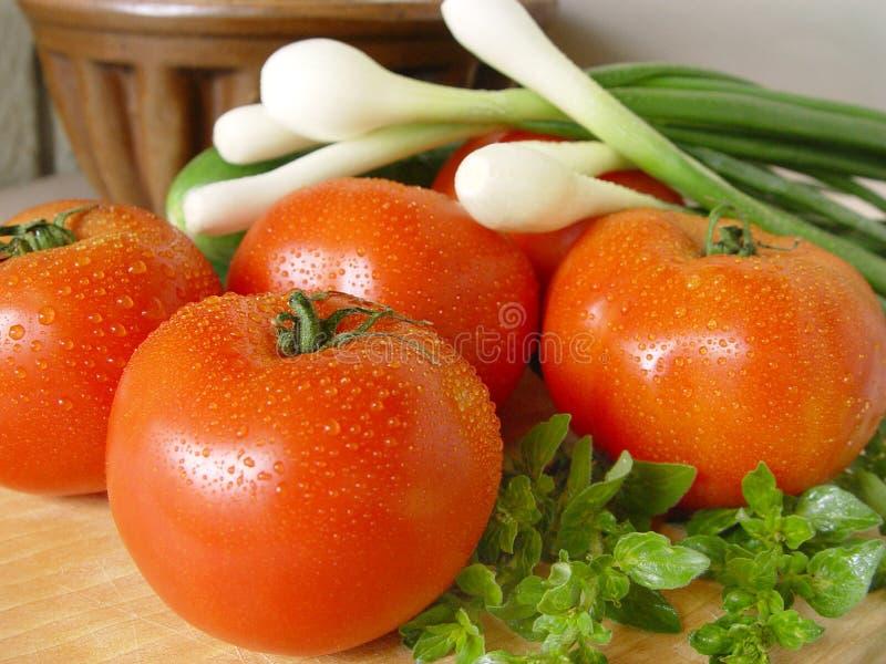 ντομάτες άνοιξη κρεμμυδιώ&n στοκ φωτογραφία με δικαίωμα ελεύθερης χρήσης