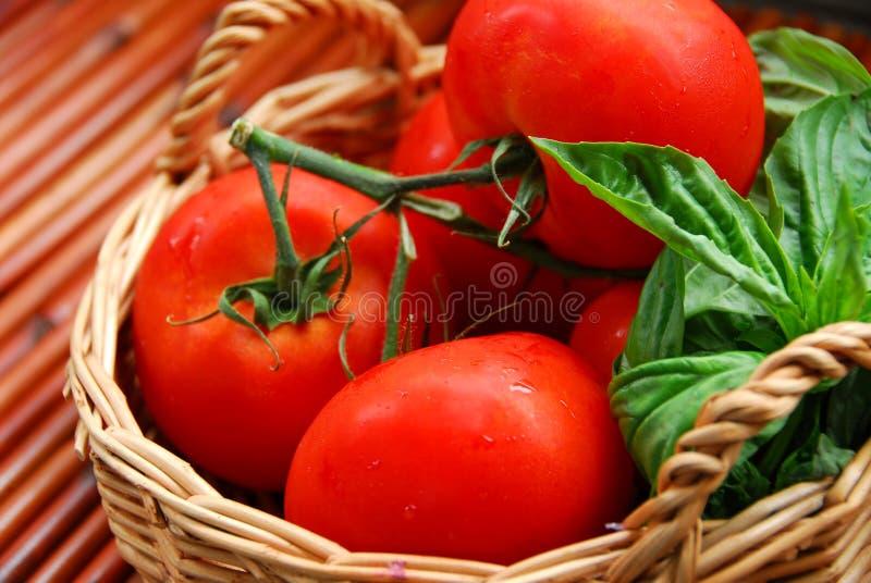 ντομάτες βασιλικού στοκ εικόνα με δικαίωμα ελεύθερης χρήσης