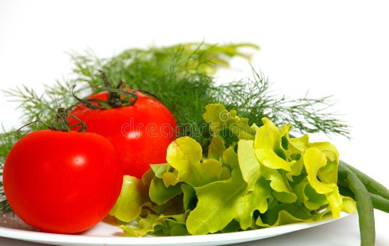 Ντομάτες και πράσινα σε ένα άσπρο πιάτο στοκ εικόνες