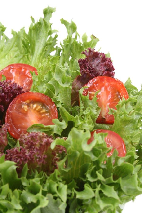 ντομάτες μαρουλιού στοκ φωτογραφία
