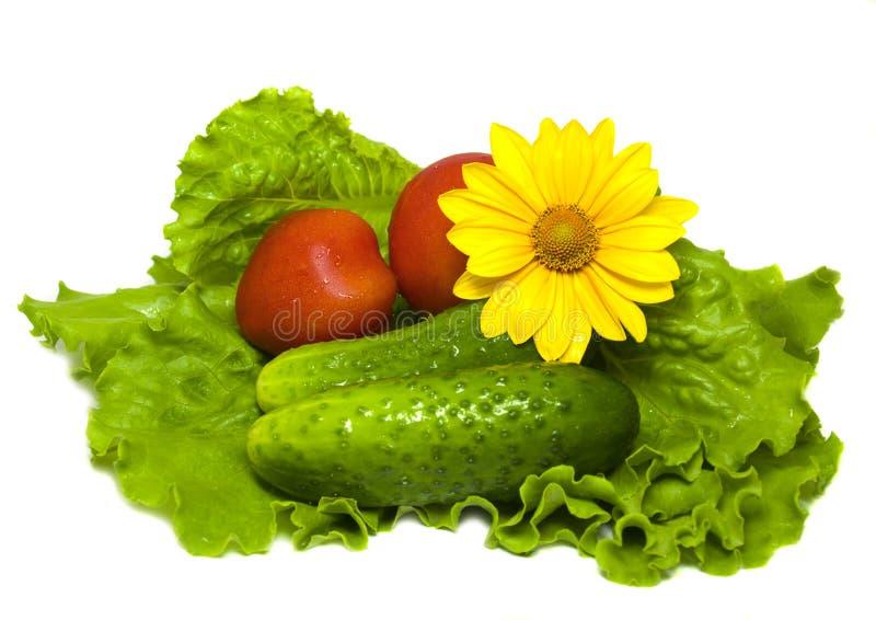 ντομάτες σαλάτας αγγου& στοκ εικόνες