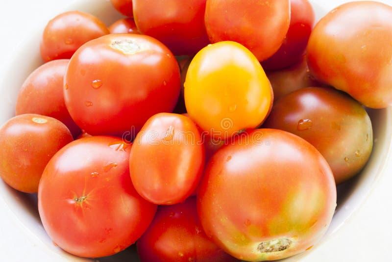 Download Ντομάτες στοκ εικόνα. εικόνα από φρέσκος, ανασκόπησης - 62722907