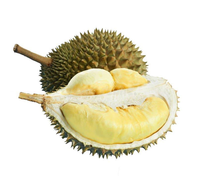 Ντούριαν σε λευκό φόντο στοκ εικόνες με δικαίωμα ελεύθερης χρήσης