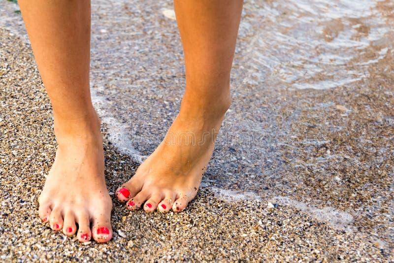 Ντροπαλά πόδια στοκ φωτογραφία με δικαίωμα ελεύθερης χρήσης