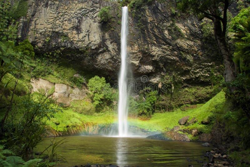 Νυφική πτώση Νέα Ζηλανδία στοκ φωτογραφία με δικαίωμα ελεύθερης χρήσης
