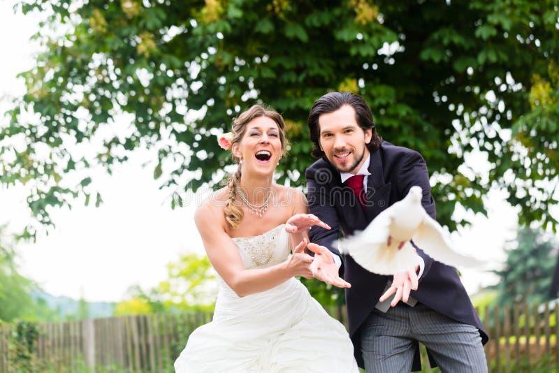 Νυφικό ζευγάρι με τα πετώντας άσπρα περιστέρια στοκ εικόνες