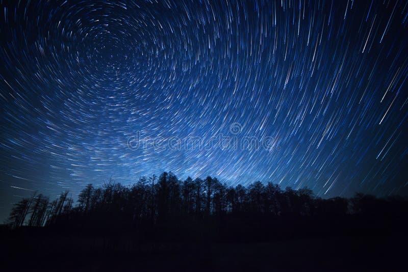 Νυχτερινός ουρανός, ίχνη αστεριών και δάσος στοκ εικόνα