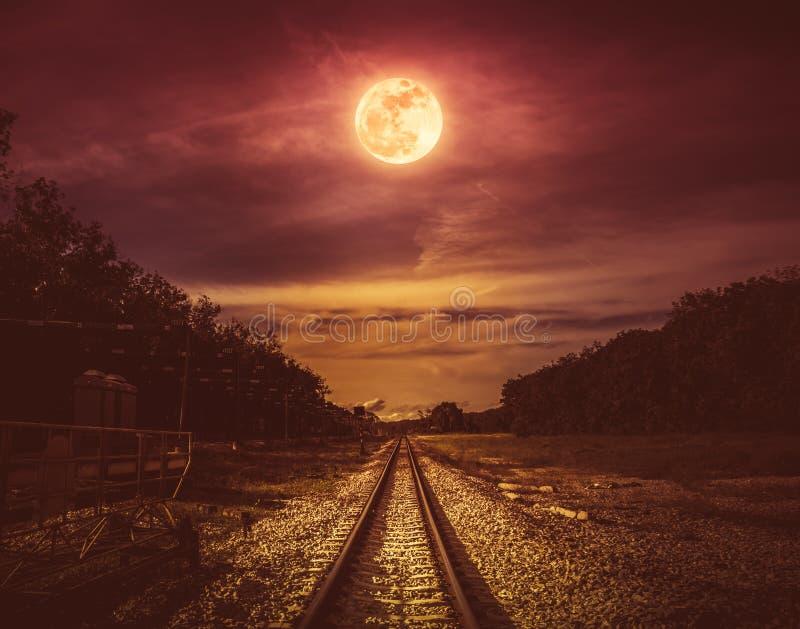 Νυχτερινός ουρανός και πανσέληνος επάνω από τις σκιαγραφίες των δέντρων και του σιδηροδρόμου στοκ φωτογραφία με δικαίωμα ελεύθερης χρήσης