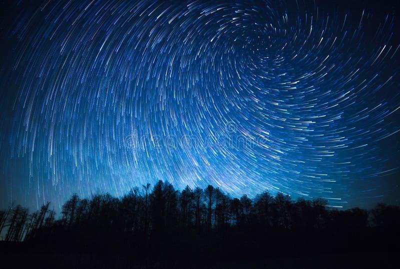 Νυχτερινός ουρανός, σπειροειδή ίχνη αστεριών και δάσος στοκ εικόνες με δικαίωμα ελεύθερης χρήσης