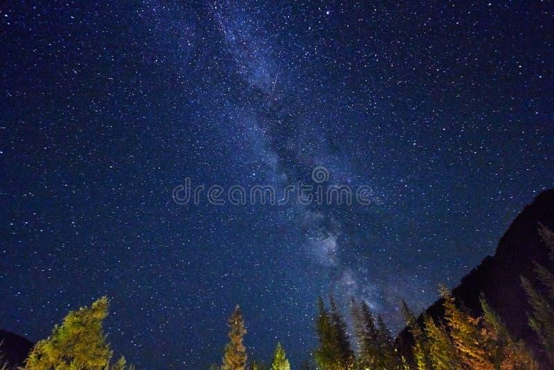 Νυχτερινός ουρανός στα βουνά Γαλακτώδης τρόπος Εκατομμύρια των αστεριών υπερυψωμένων Ταξίδι μέσω των βουνών Altai στοκ εικόνα