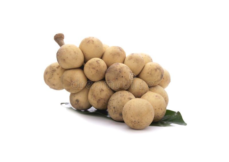 Νωπά μακρόκαρπα φρούτα σε λευκό φόντο στοκ φωτογραφίες
