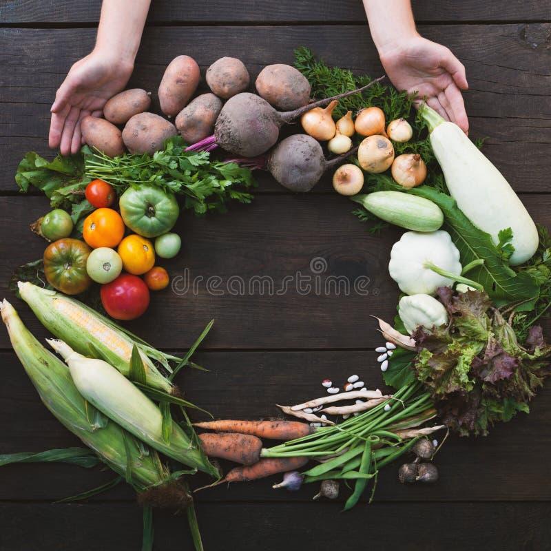 Νωπά οργανικά υγιεινά τρόφιμα, αποτοξίνωση των ανεπεξέργαστων λαχανικών Αντιγραφή χώρου για κείμενο στοκ εικόνα με δικαίωμα ελεύθερης χρήσης