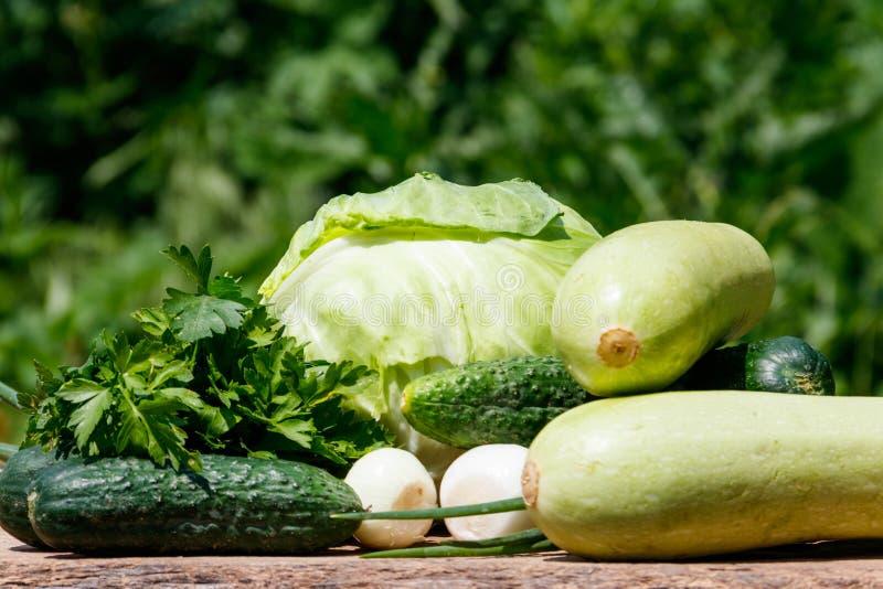 Νωπά πράσινα λαχανικά σε ξύλινο ψαλίδι στοκ εικόνα με δικαίωμα ελεύθερης χρήσης