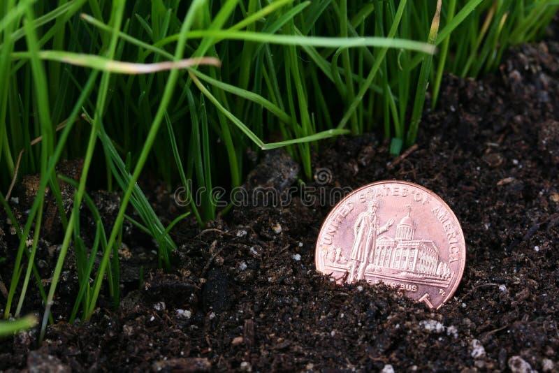 νόμισμα που χάνεται στοκ εικόνες