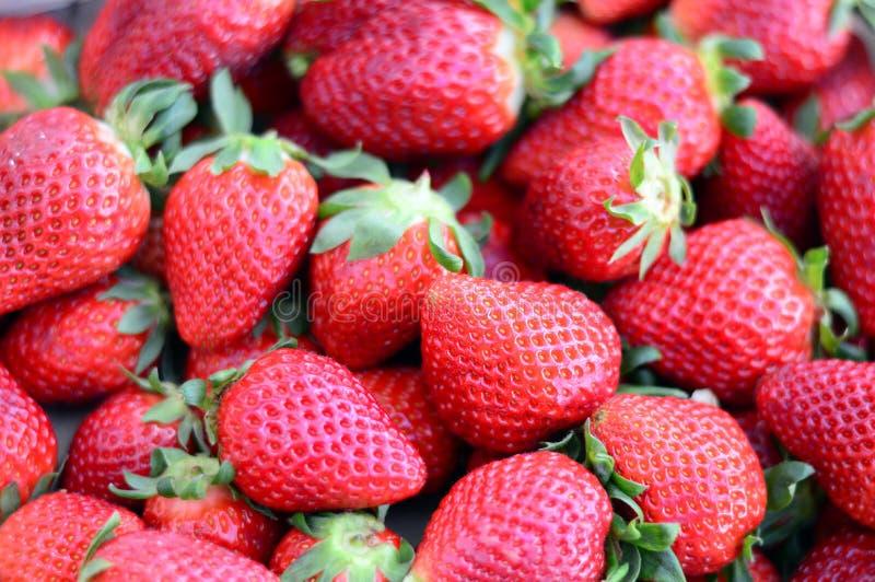 Νόστιμες φράουλες που απομονώνονται στο άσπρο υπόβαθρο στοκ εικόνες