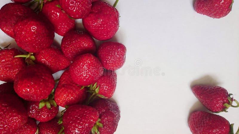 Νόστιμες ώριμες κόκκινες φράουλες το καλοκαίρι σε ένα άσπρο υπόβαθρο στοκ εικόνες