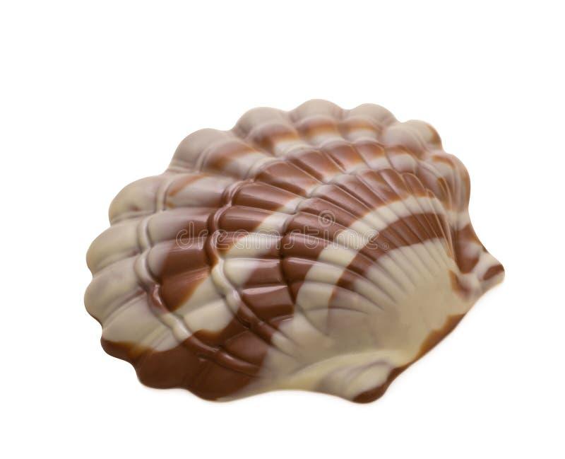 Νόστιμη μικτή σοκολάτα στη μορφή του θαλασσινού κοχυλιού στοκ εικόνες