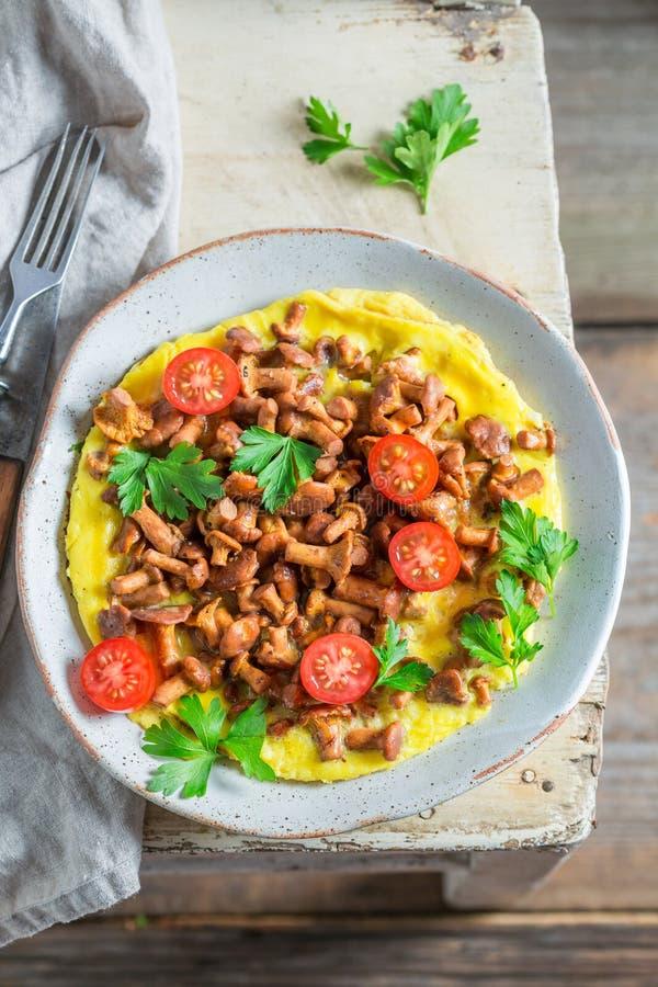 Νόστιμη ομελέτα με τα μανιτάρια, τις ντομάτες κερασιών και το μαϊντανό στοκ εικόνα με δικαίωμα ελεύθερης χρήσης