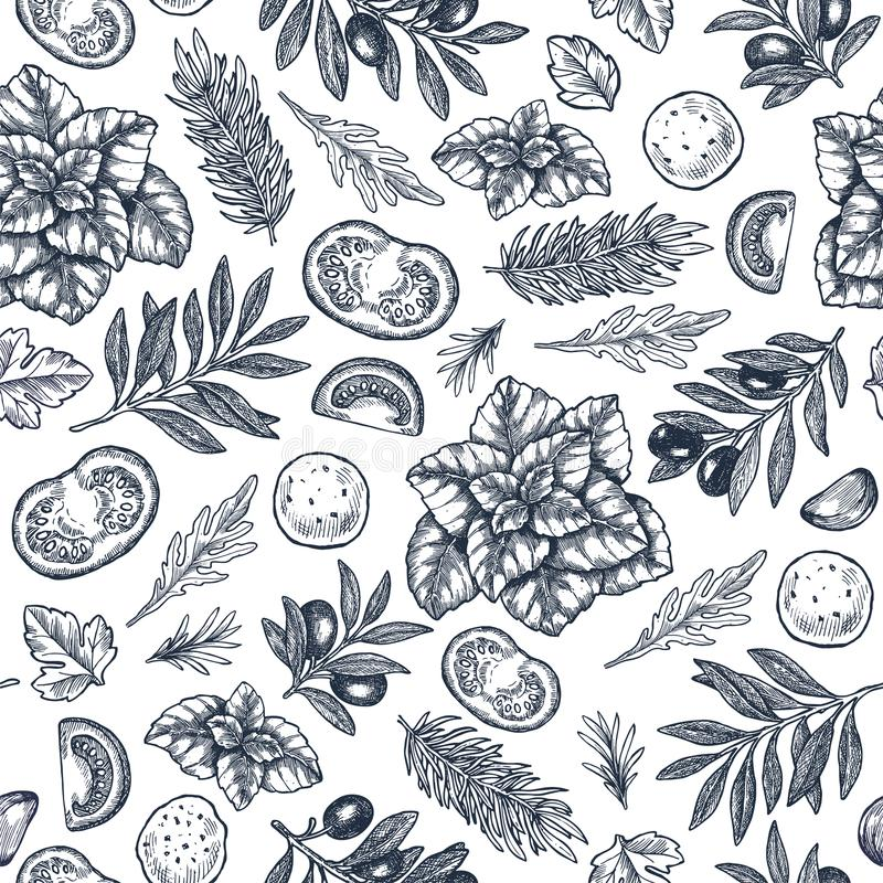 Νόστιμος βασιλικός, mozarella, ντομάτα, ελιά, άνευ ραφής σχέδιο σκόρδου Χαραγμένη απεικόνιση πλαισίων συστατικά ιταλικά ελεύθερη απεικόνιση δικαιώματος