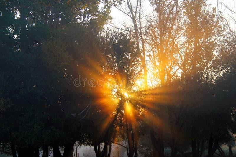Νότια ηλιοφάνεια του Manitoba ακτίνων ηλιοβασιλέματος στοκ φωτογραφία με δικαίωμα ελεύθερης χρήσης