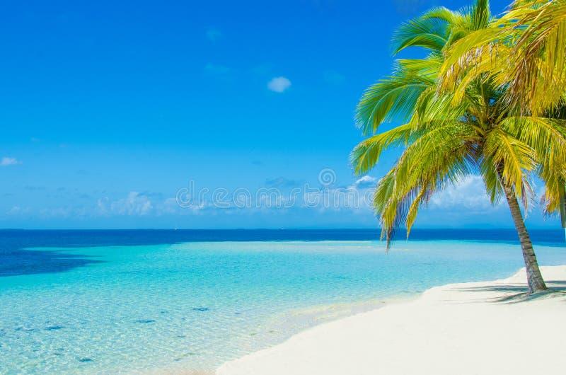 Νότιο νερό Caye - μικρό τροπικό νησί στο σκόπελο εμποδίων με την παραλία παραδείσου - που είναι γνωστή για τις διακοπές κατάδυσης στοκ φωτογραφίες