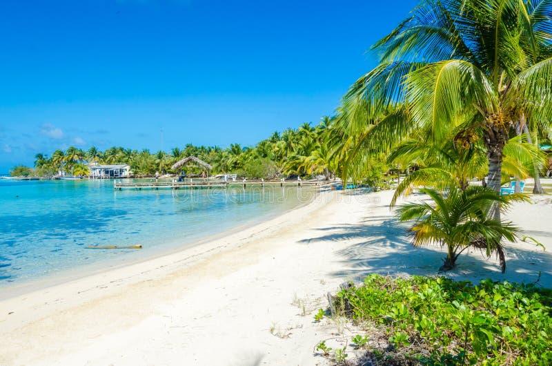 Νότιο νερό Caye - μικρό τροπικό νησί στο σκόπελο εμποδίων με την παραλία παραδείσου - που είναι γνωστή για τις διακοπές κατάδυσης στοκ φωτογραφία με δικαίωμα ελεύθερης χρήσης