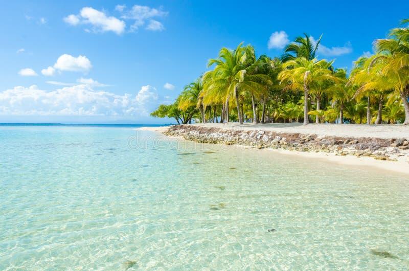 Νότιο νερό Caye - μικρό τροπικό νησί στο σκόπελο εμποδίων με την παραλία παραδείσου - που είναι γνωστή για τις διακοπές κατάδυσης στοκ εικόνα με δικαίωμα ελεύθερης χρήσης