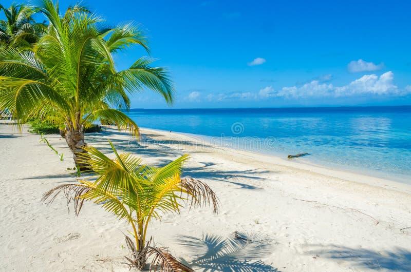 Νότιο νερό Caye - μικρό τροπικό νησί στο σκόπελο εμποδίων με την παραλία παραδείσου - που είναι γνωστή για τις διακοπές κατάδυσης στοκ φωτογραφίες με δικαίωμα ελεύθερης χρήσης