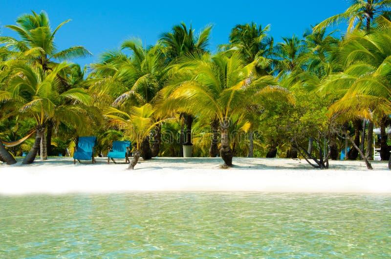 Νότιο νερό Caye στη Μπελίζ - μικρό καραϊβικό νησί παραδείσου με την τροπική παραλία για τις διακοπές και τη χαλάρωση στοκ εικόνες με δικαίωμα ελεύθερης χρήσης