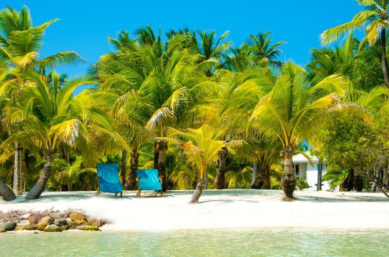 Νότιο νερό Caye στη Μπελίζ - μικρό καραϊβικό νησί παραδείσου με την τροπική παραλία για τις διακοπές και τη χαλάρωση στοκ φωτογραφία