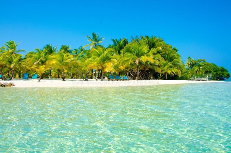 Νότιο νερό Caye στη Μπελίζ - μικρό καραϊβικό νησί παραδείσου με την τροπική παραλία για τις διακοπές και τη χαλάρωση στοκ φωτογραφίες με δικαίωμα ελεύθερης χρήσης
