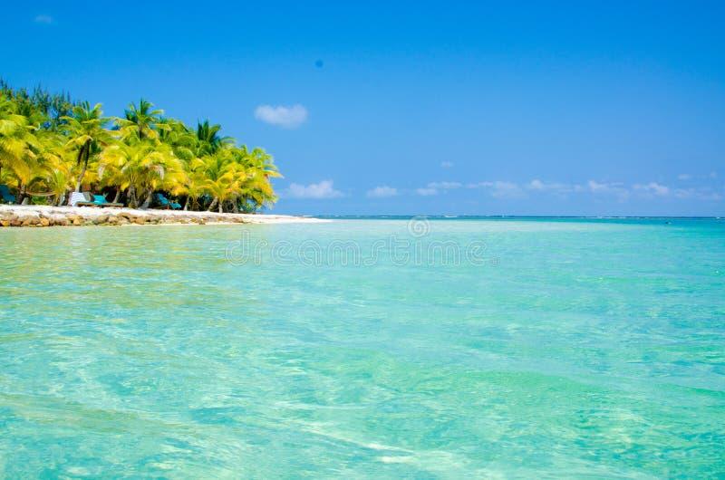 Νότιο νερό Caye στη Μπελίζ - μικρό καραϊβικό νησί παραδείσου με την τροπική παραλία για τις διακοπές και τη χαλάρωση στοκ εικόνα