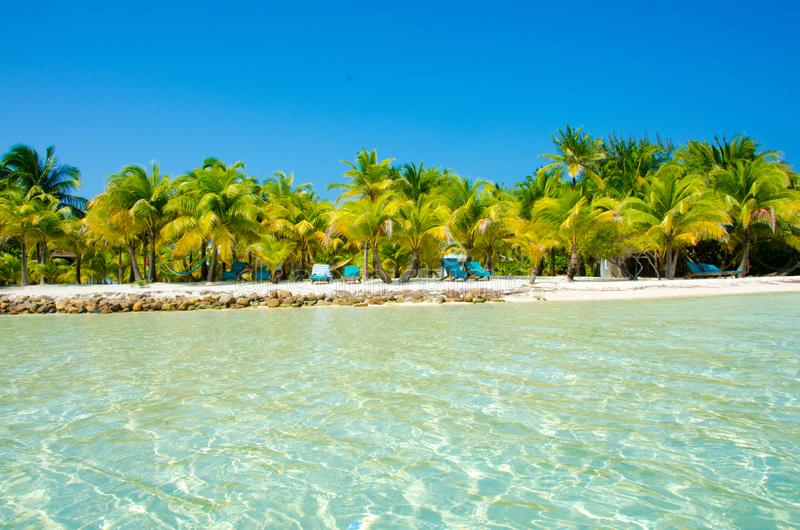 Νότιο νερό Caye στη Μπελίζ - μικρό καραϊβικό νησί παραδείσου με την τροπική παραλία για τις διακοπές και τη χαλάρωση στοκ εικόνα με δικαίωμα ελεύθερης χρήσης