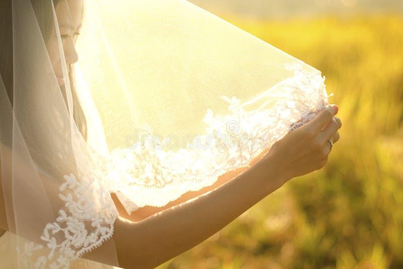 νύφη κάτω από το πέπλο στοκ φωτογραφίες με δικαίωμα ελεύθερης χρήσης