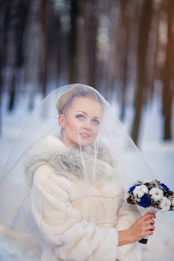Νύφη κάτω από το πέπλο το χειμώνα υπαίθρια στοκ εικόνες με δικαίωμα ελεύθερης χρήσης