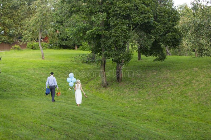 Νύφη και νεόνυμφος με τα μπλε μπαλόνια και καλάθι πικ-νίκ κοντά στα δέντρα μηλιάς στοκ εικόνες