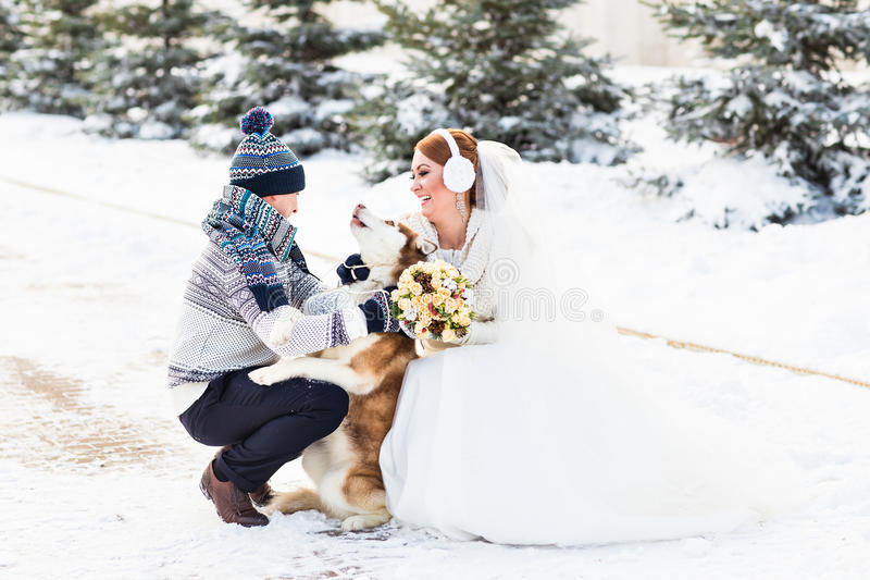 Νύφη και νεόνυμφος με το σκυλί Huskies το χειμώνα στοκ φωτογραφία με δικαίωμα ελεύθερης χρήσης
