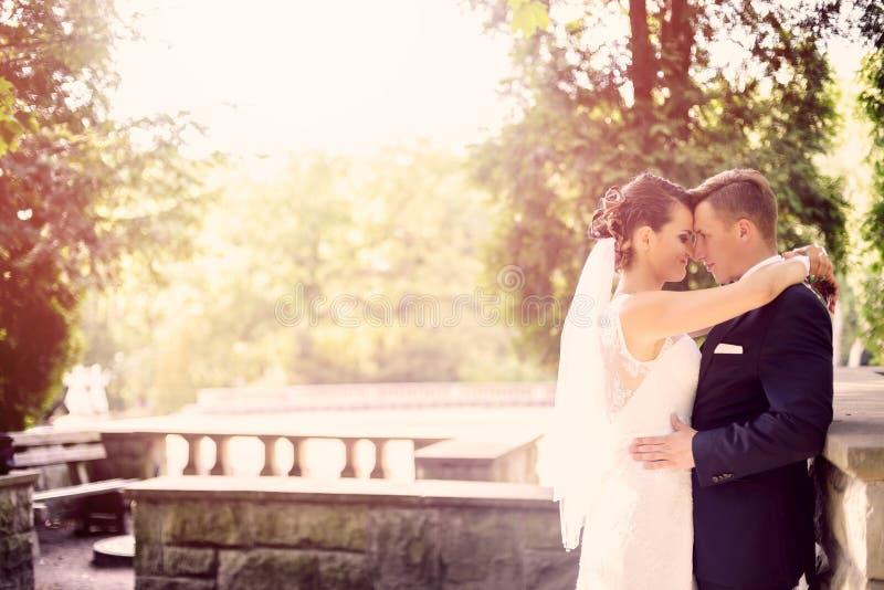 Νύφη και νεόνυμφος που αγκαλιάζουν στο πάρκο στοκ εικόνες