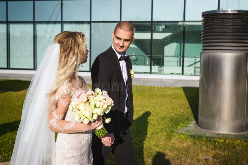 Νύφη και νεόνυμφος που περπατούν κοντά στο σύγχρονο κτήριο στοκ εικόνα με δικαίωμα ελεύθερης χρήσης
