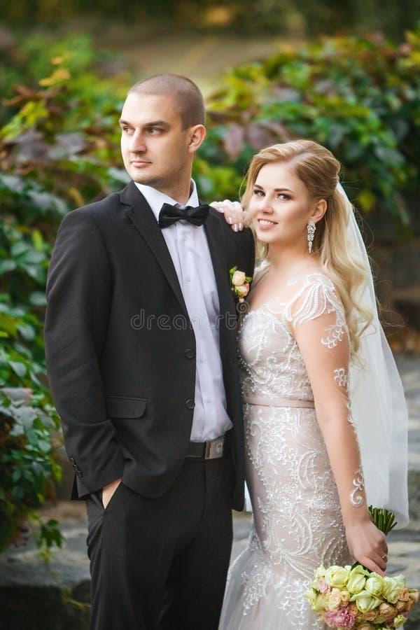 Νύφη και νεόνυμφος που φαίνονται ένας τρόπος κοντά στο φράκτη σταφυλιών στοκ φωτογραφία με δικαίωμα ελεύθερης χρήσης