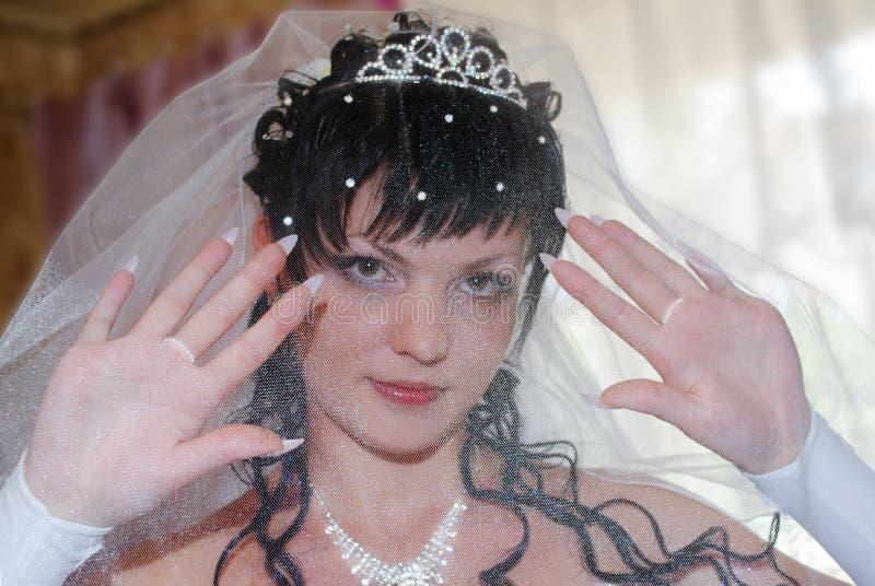 Νύφη στο πέπλο πριν από το γάμο Brunette σε μια κορώνα με το μαργαριτάρι στοκ εικόνα με δικαίωμα ελεύθερης χρήσης